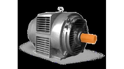 Электродвигатели типа АМН с пониженной степенью защиты
